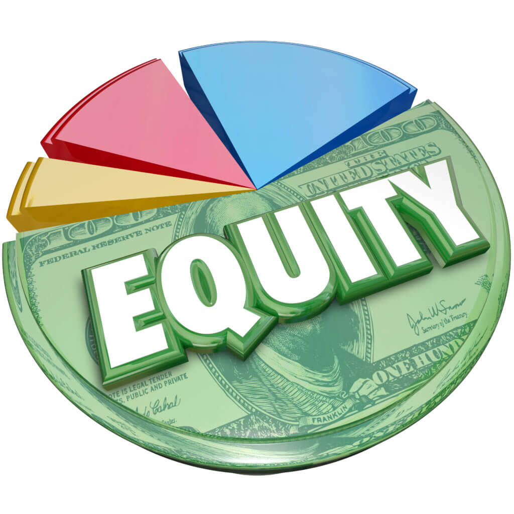Equity pie chart