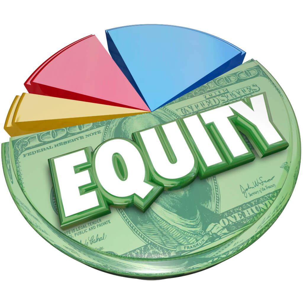 Equity pie chart