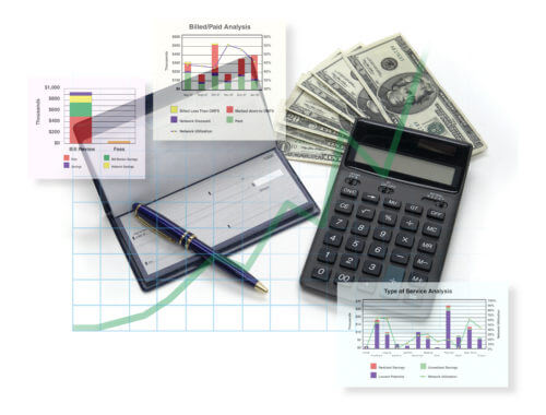 financial assessment picture includes financial analysis; checks, graphs, money.